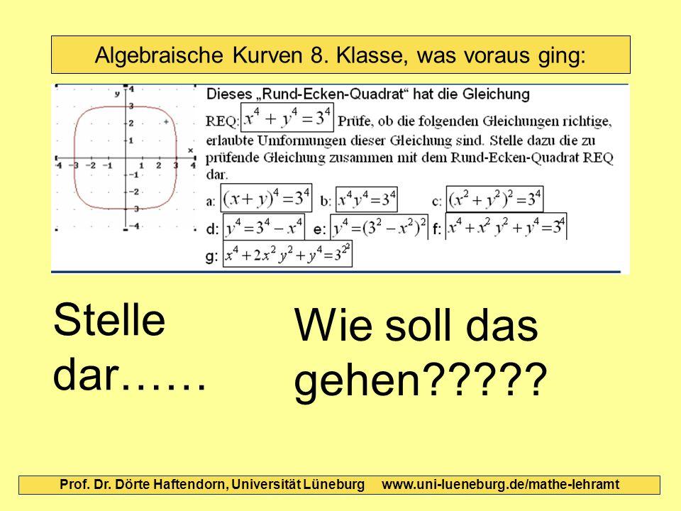 Algebraische Kurven 8. Klasse, was voraus ging: Prof. Dr. Dörte Haftendorn, Universität Lüneburg www.uni-lueneburg.de/mathe-lehramt Stelle dar…… Wie s