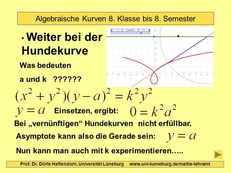 Algebraische Kurven 8. Klasse bis 8. Semester Prof. Dr. Dörte Haftendorn, Universität Lüneburg www.uni-lueneburg.de/mathe-lehramt Weiter bei der Hunde
