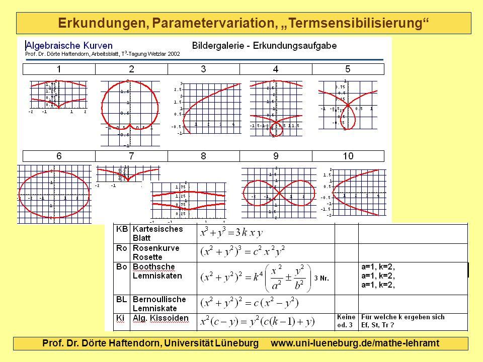 Erkundungen, Parametervariation, Termsensibilisierung Prof. Dr. Dörte Haftendorn, Universität Lüneburg www.uni-lueneburg.de/mathe-lehramt
