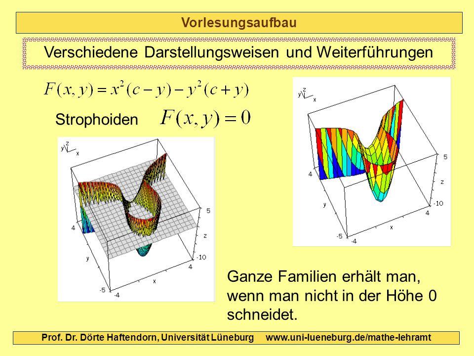 Vorlesungsaufbau Prof. Dr. Dörte Haftendorn, Universität Lüneburg www.uni-lueneburg.de/mathe-lehramt Verschiedene Darstellungsweisen und Weiterführung