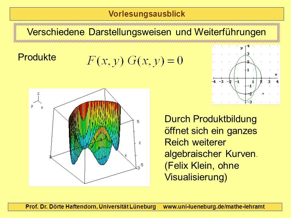 Vorlesungsausblick Prof. Dr. Dörte Haftendorn, Universität Lüneburg www.uni-lueneburg.de/mathe-lehramt Verschiedene Darstellungsweisen und Weiterführu