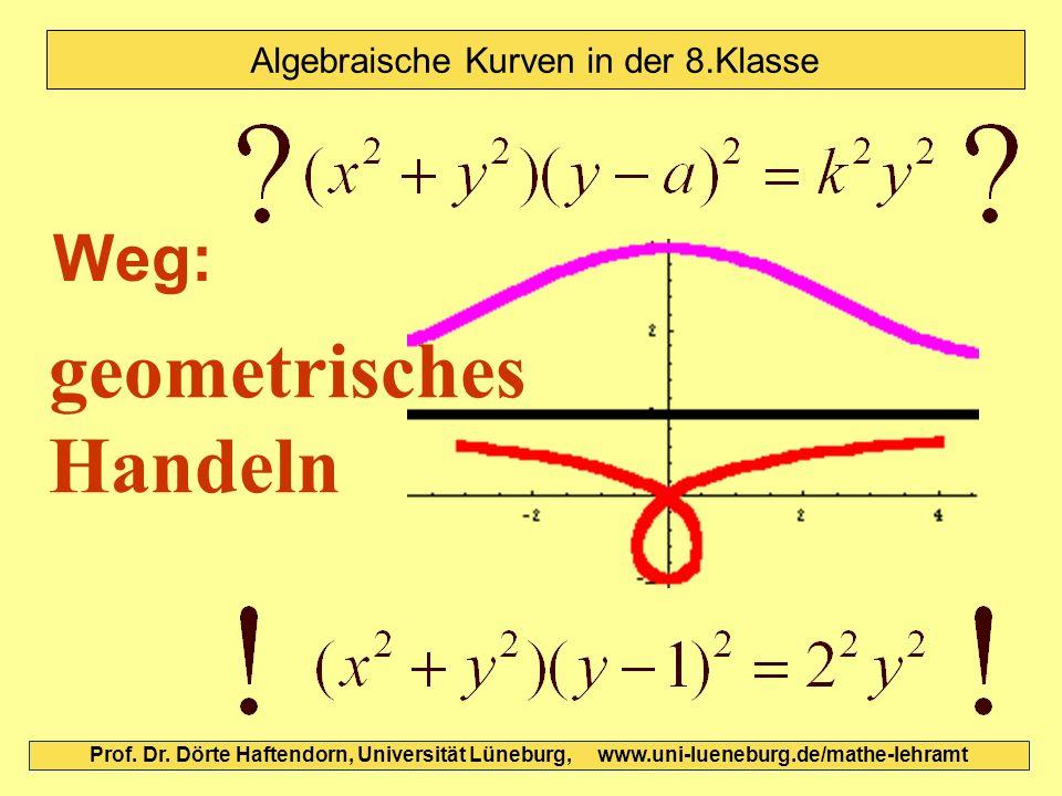 Prof. Dr. Dörte Haftendorn, Universität Lüneburg, www.uni-lueneburg.de/mathe-lehramt Algebraische Kurven in der 8.Klasse geometrisches Handeln Weg: