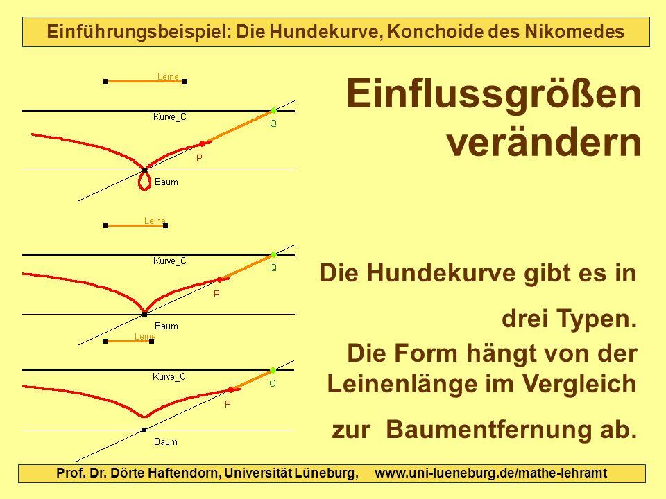 Einführungsbeispiel: Die Hundekurve, Konchoide des Nikomedes Die Hundekurve gibt es in drei Typen. Die Form hängt von der Leinenlänge im Vergleich zur