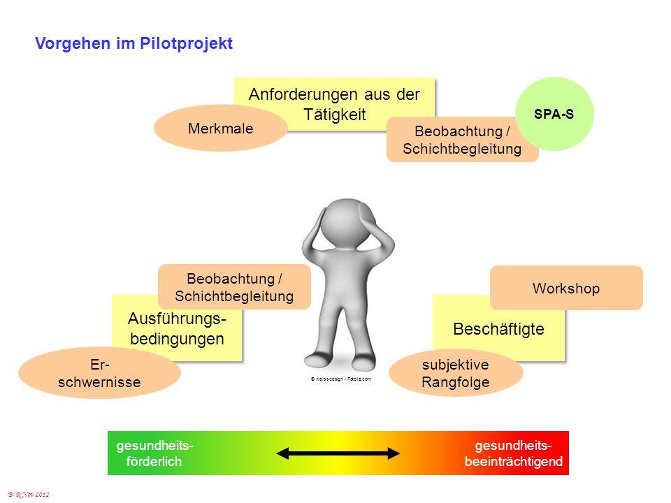 B/R Nov 2012 Vorgehen im Pilotprojekt Anforderungen aus der Tätigkeit Ausführungs- bedingungen Ausführungs- bedingungen Beschäftigte gesundheits- förd