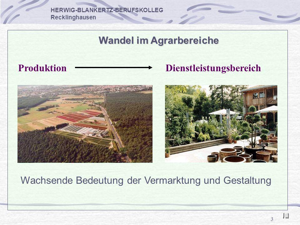 3 HERWIG-BLANKERTZ-BERUFSKOLLEG Recklinghausen Wandel im Agrarbereiche Wachsende Bedeutung der Vermarktung und Gestaltung ProduktionDienstleistungsber