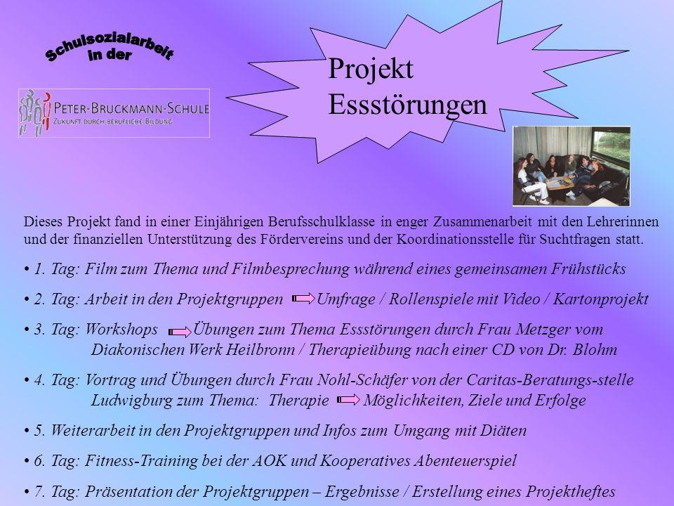 Dieses Projekt fand in einer Einjährigen Berufsschulklasse in enger Zusammenarbeit mit den Lehrerinnen und der finanziellen Unterstützung des Förderve