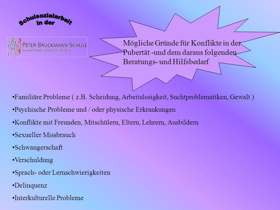 Familiäre Probleme ( z.B. Scheidung, Arbeitslosigkeit, Suchtproblematiken, Gewalt ) Psychische Probleme und / oder physische Erkrankungen Konflikte mi