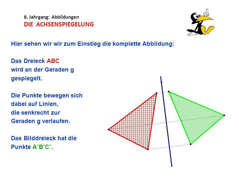 8. Jahrgang: Abbildungen DIE ACHSENSPIEGELUNG Hier sehen wir wir zum Einstieg die komplette Abbildung: Das Dreieck ABC wird an der Geraden g gespiegel