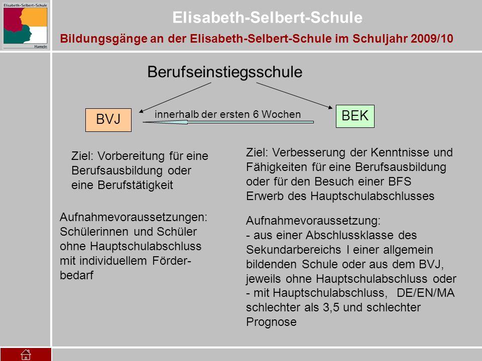 Elisabeth-Selbert-Schule Bildungsgänge an der Elisabeth-Selbert-Schule im Schuljahr 2009/10 Berufseinstiegsschule Aufnahmevoraussetzungen: Schülerinne