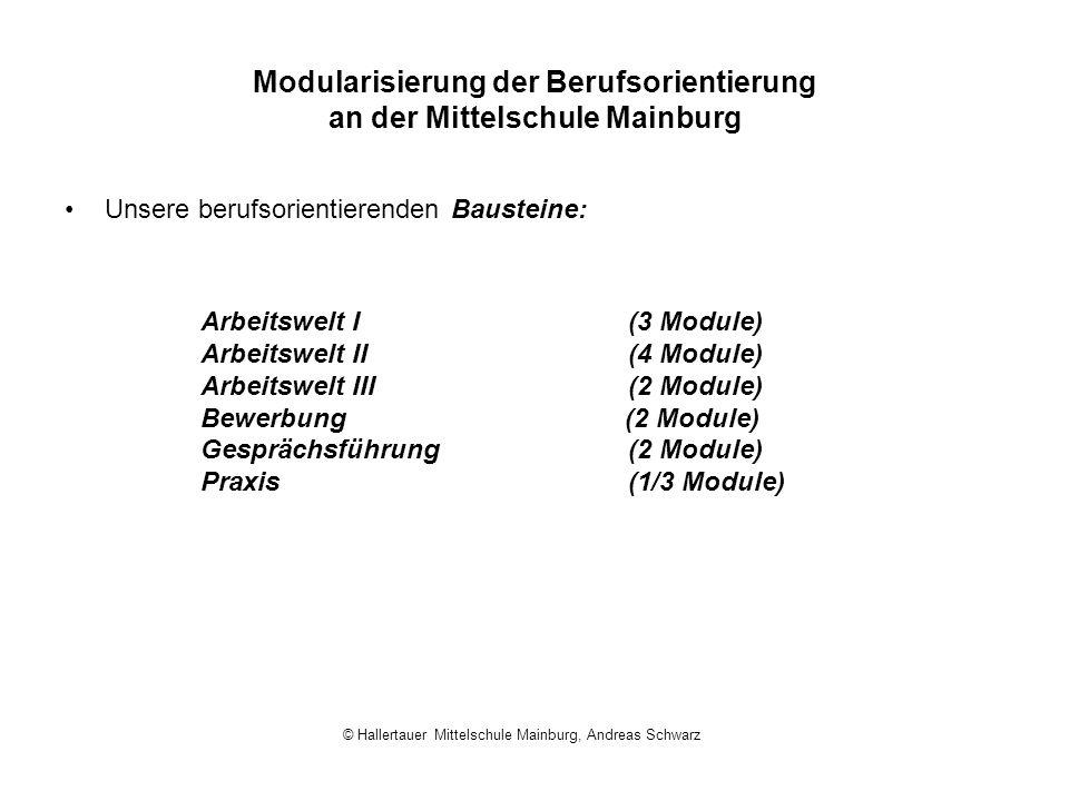 Modularisierung der Berufsorientierung an der Mittelschule Mainburg Unsere berufsorientierenden Bausteine: Arbeitswelt I(3 Module) Arbeitswelt II(4 Mo