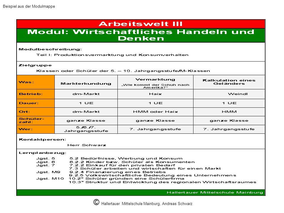 © Hallertauer Mittelschule Mainburg, Andreas Schwarz Beispiel aus der Modulmappe