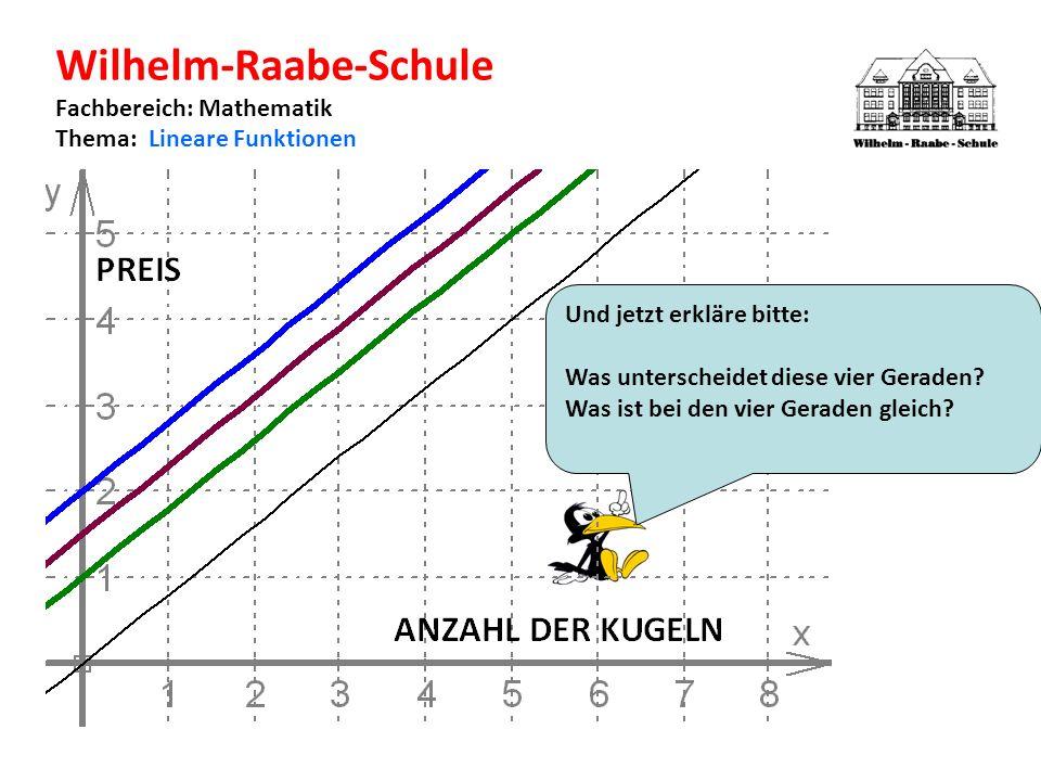 Wilhelm-Raabe-Schule Fachbereich: Mathematik Thema: Lineare Funktionen Und jetzt erkläre bitte: Was unterscheidet diese vier Geraden.