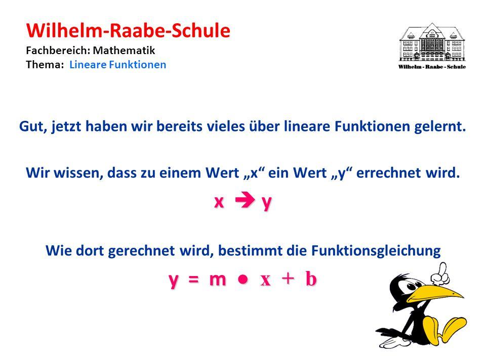 Wilhelm-Raabe-Schule Fachbereich: Mathematik Thema: Lineare Funktionen Gut, jetzt haben wir bereits vieles über lineare Funktionen gelernt.