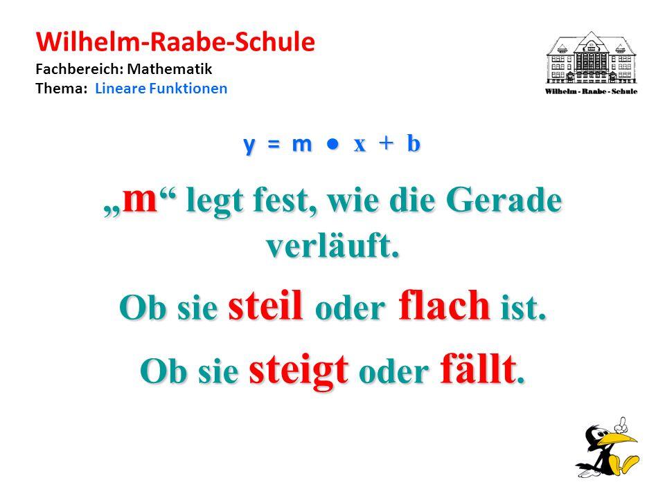 Wilhelm-Raabe-Schule Fachbereich: Mathematik Thema: Lineare Funktionen y = m x + b m legt fest, wie die Gerade verläuft.