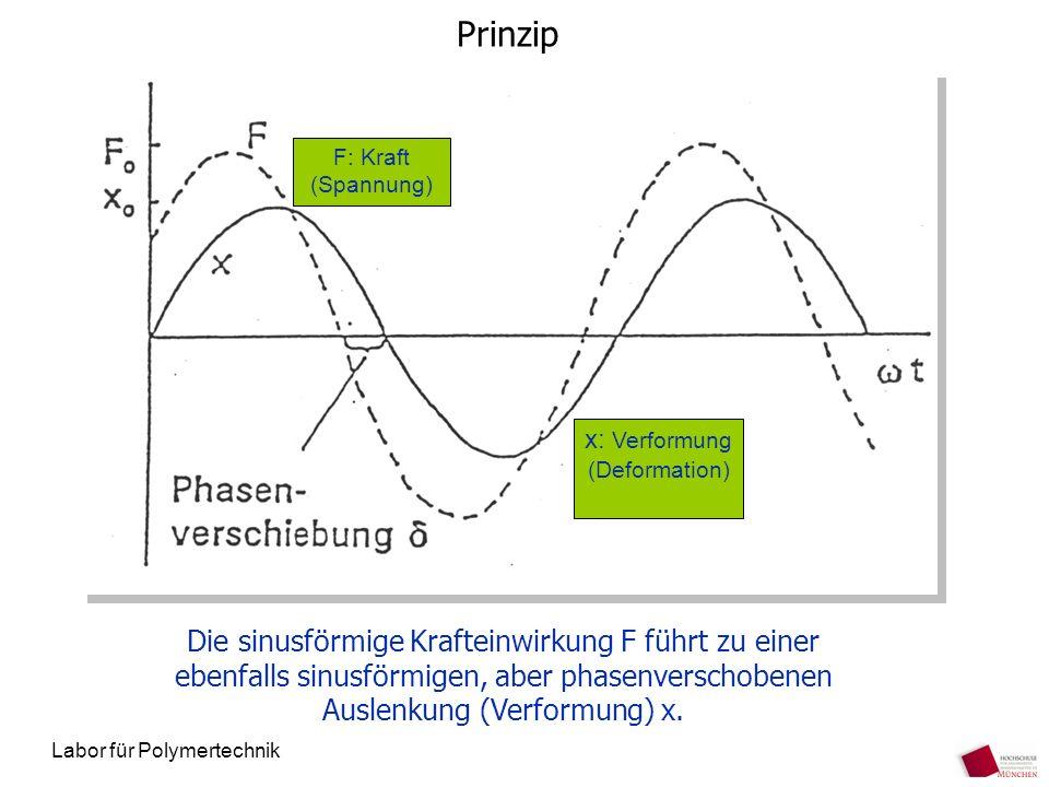 Labor für Polymertechnik Prinzip Die sinusförmige Krafteinwirkung F führt zu einer ebenfalls sinusförmigen, aber phasenverschobenen Auslenkung (Verfor