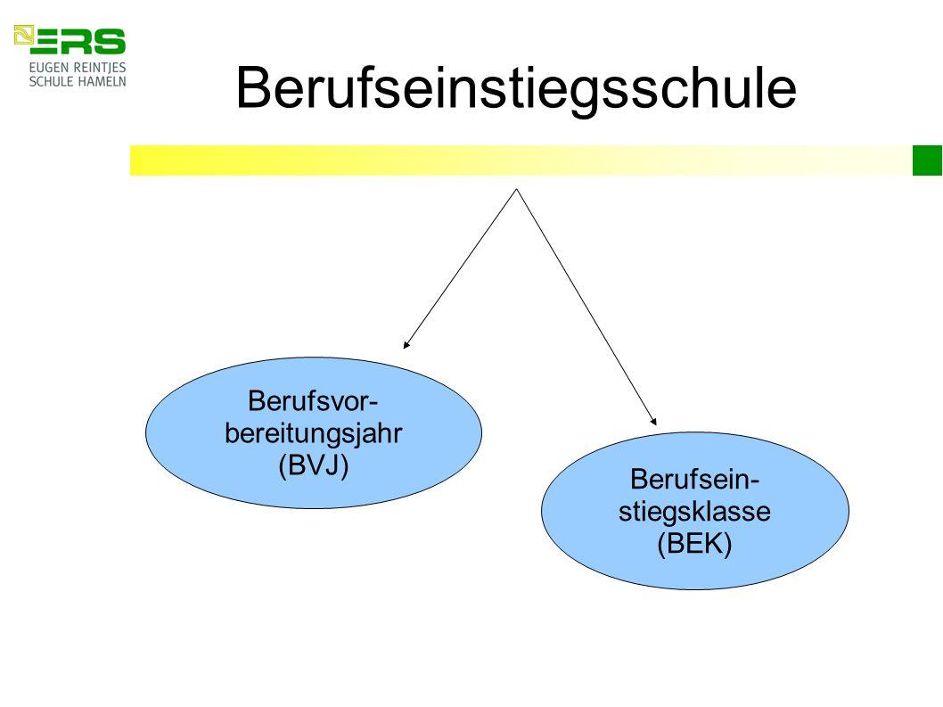 Berufseinstiegsschule Berufsvor- bereitungsjahr (BVJ) Berufsein- stiegsklasse (BEK)