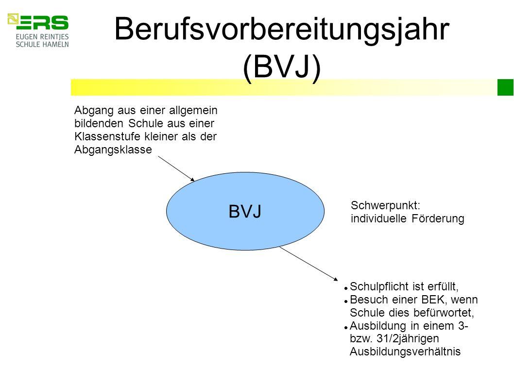 Berufsvorbereitungsjahr (BVJ) BVJ Abgang aus einer allgemein bildenden Schule aus einer Klassenstufe kleiner als der Abgangsklasse Schwerpunkt: indivi