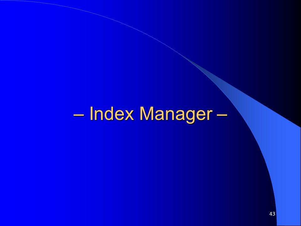 43 – Index Manager –