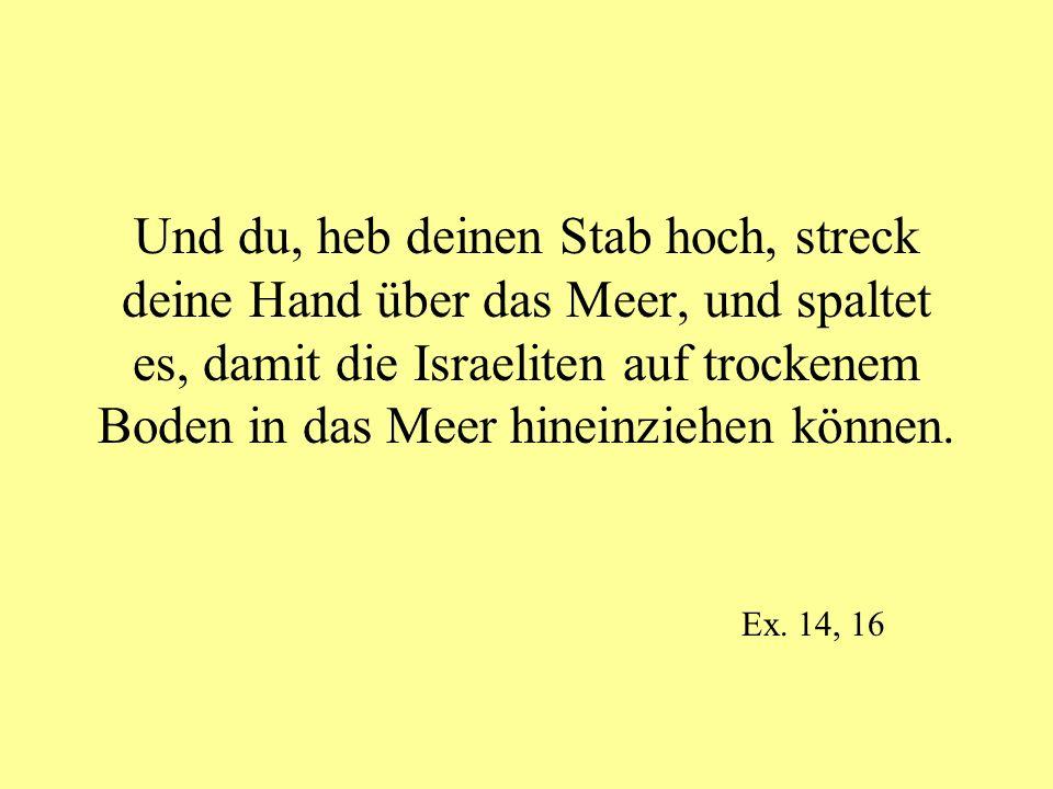 Und du, heb deinen Stab hoch, streck deine Hand über das Meer, und spaltet es, damit die Israeliten auf trockenem Boden in das Meer hineinziehen könne