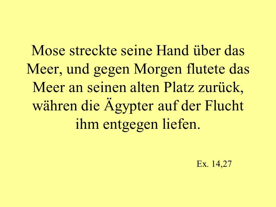 Mose streckte seine Hand über das Meer, und gegen Morgen flutete das Meer an seinen alten Platz zurück, währen die Ägypter auf der Flucht ihm entgegen
