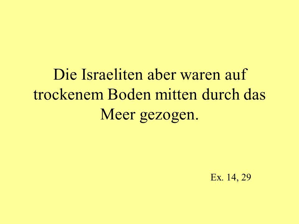 Die Israeliten aber waren auf trockenem Boden mitten durch das Meer gezogen. Ex. 14, 29