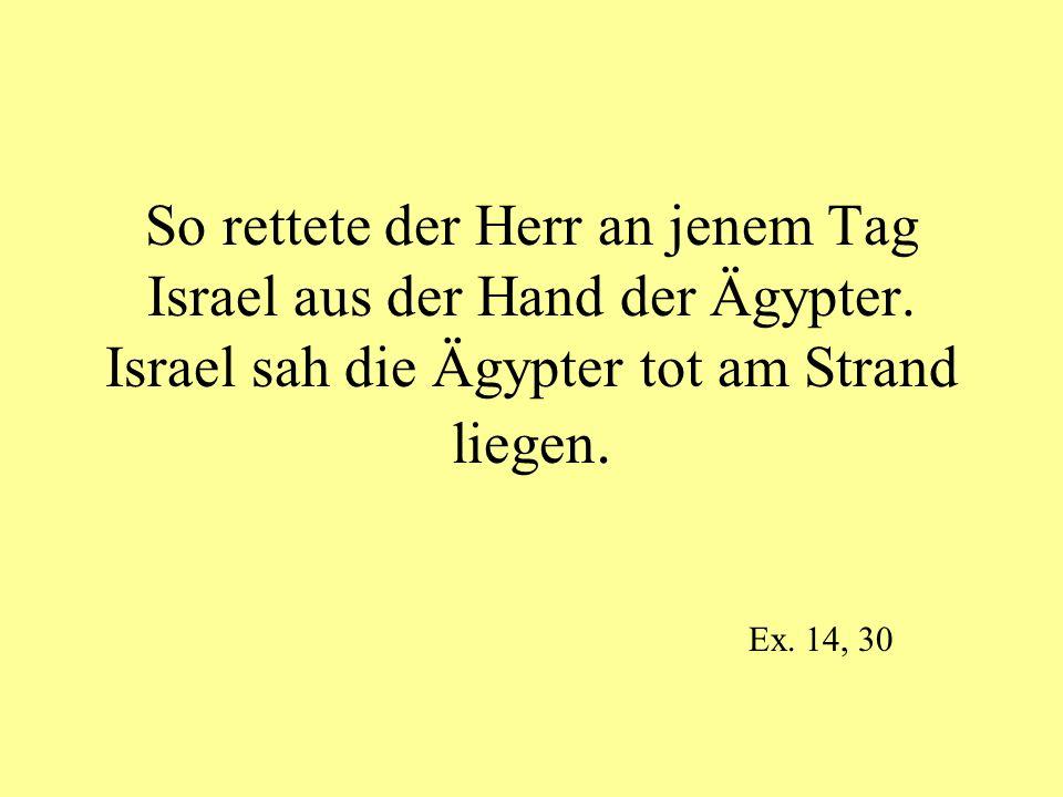 So rettete der Herr an jenem Tag Israel aus der Hand der Ägypter. Israel sah die Ägypter tot am Strand liegen. Ex. 14, 30