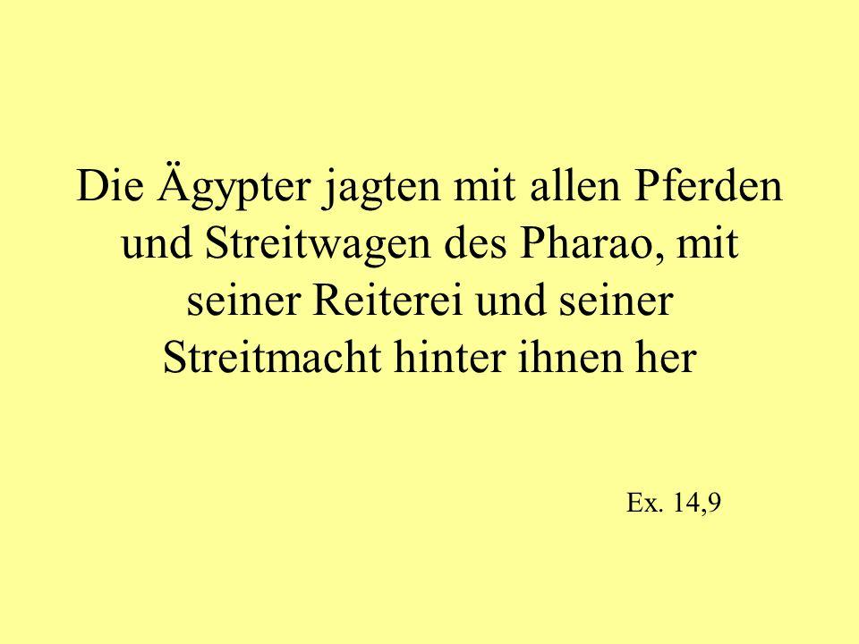 Die Ägypter jagten mit allen Pferden und Streitwagen des Pharao, mit seiner Reiterei und seiner Streitmacht hinter ihnen her Ex. 14,9