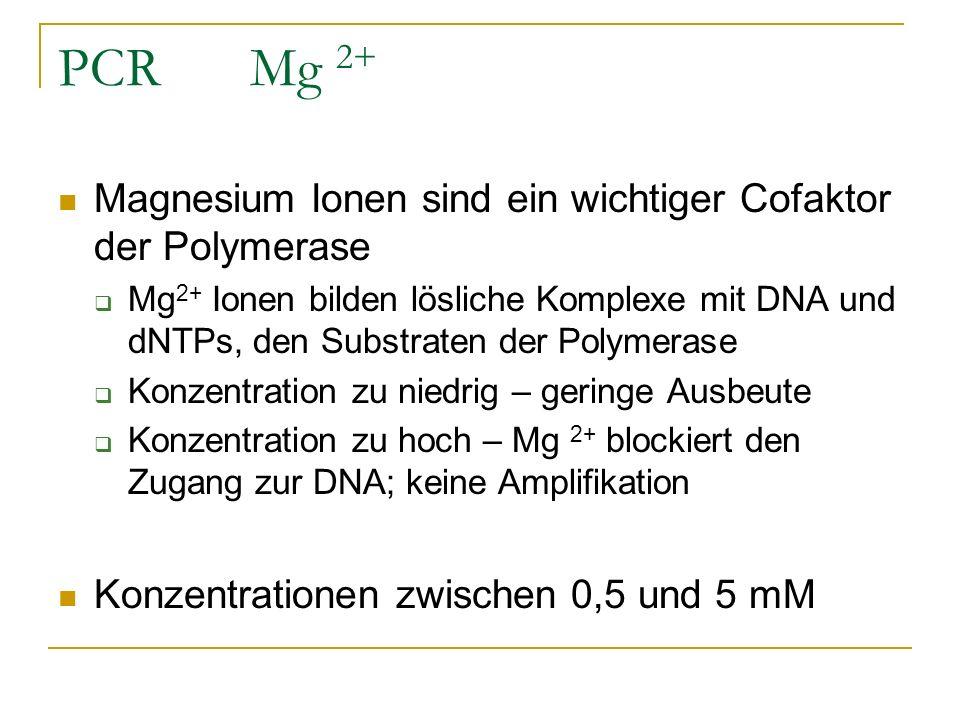 PCRMg 2+ Magnesium Ionen sind ein wichtiger Cofaktor der Polymerase Mg 2+ Ionen bilden lösliche Komplexe mit DNA und dNTPs, den Substraten der Polymer