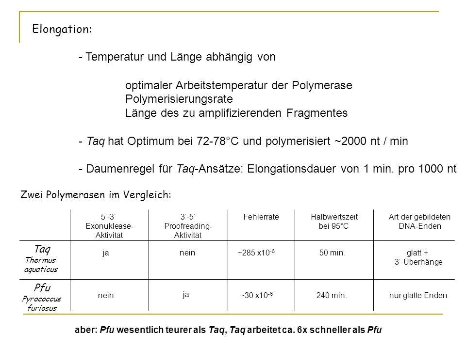 Elongation: - Temperatur und Länge abhängig von optimaler Arbeitstemperatur der Polymerase Polymerisierungsrate Länge des zu amplifizierenden Fragment