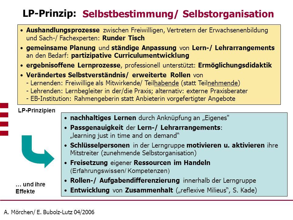 A. Mörchen/ E. Bubolz-Lutz 04/2006 Aushandlungsprozesse zwischen Freiwilligen, Vertretern der Erwachsenenbildung und Sach-/ Fachexperten: Runder Tisch