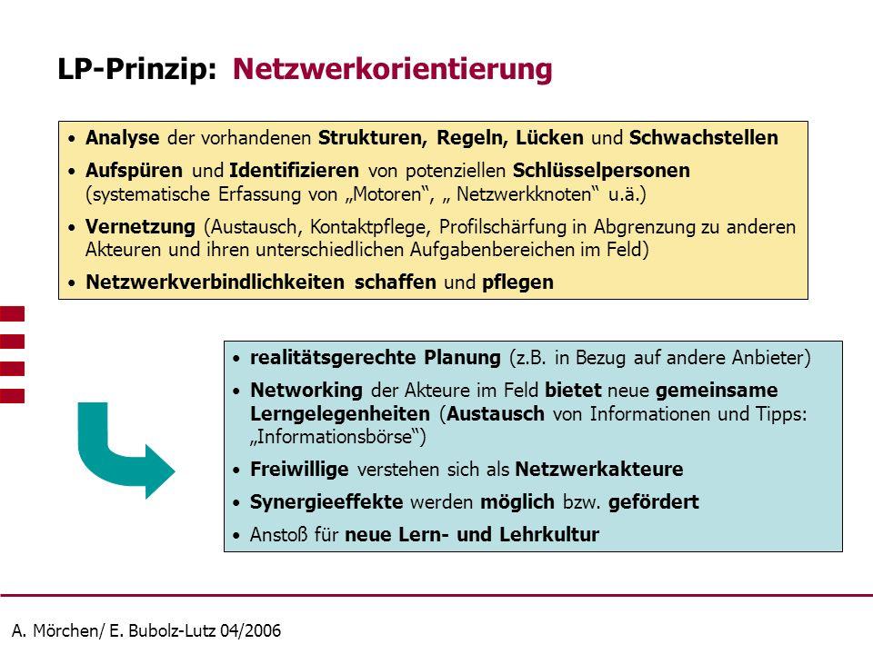 A. Mörchen/ E. Bubolz-Lutz 04/2006 Analyse der vorhandenen Strukturen, Regeln, Lücken und Schwachstellen Aufspüren und Identifizieren von potenziellen
