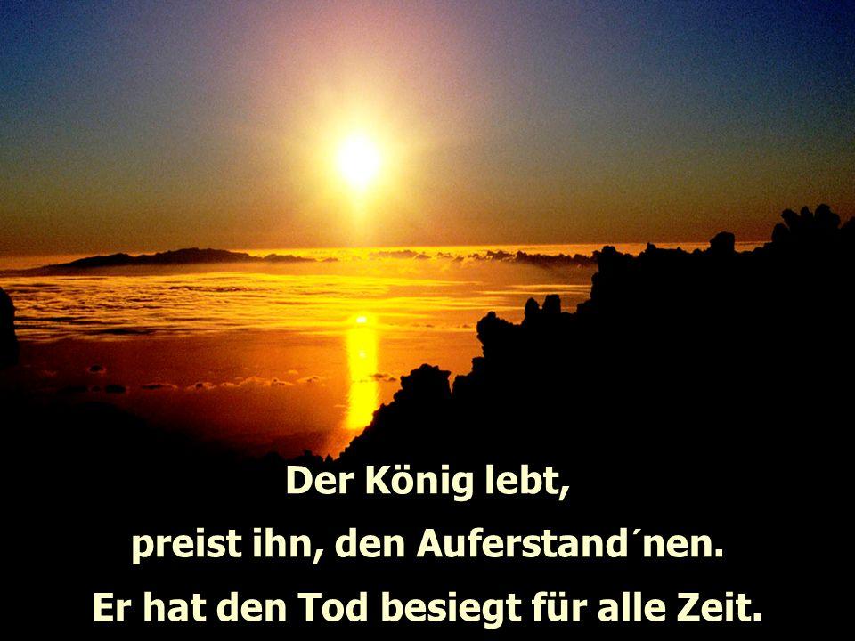 Der König lebt, preist ihn, der uns befreite. Er regiert in alle Ewigkeit.