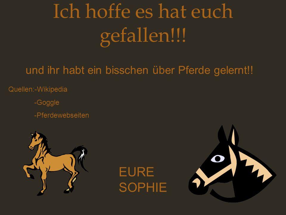 Ich hoffe es hat euch gefallen!!! und ihr habt ein bisschen über Pferde gelernt!! EURE SOPHIE Quellen:-Wikipedia -Goggle -Pferdewebseiten