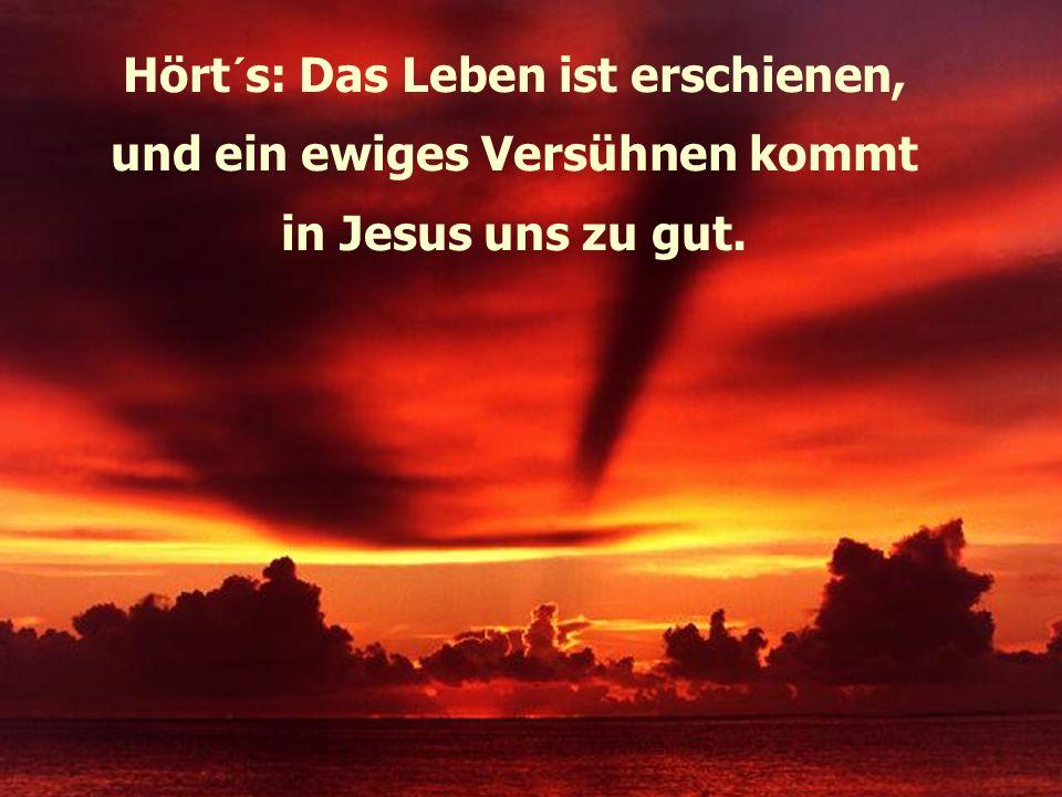 Hört´s: Das Leben ist erschienen, und ein ewiges Versühnen kommt in Jesus uns zu gut.
