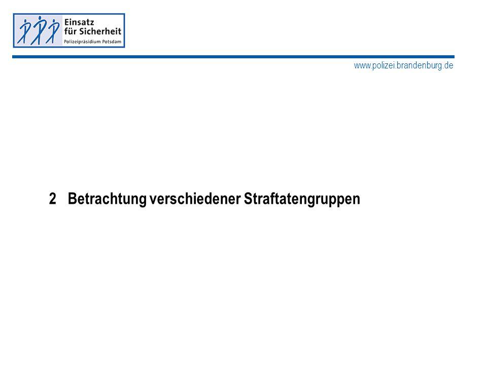 www.polizei.brandenburg.de 2 Betrachtung verschiedener Straftatengruppen