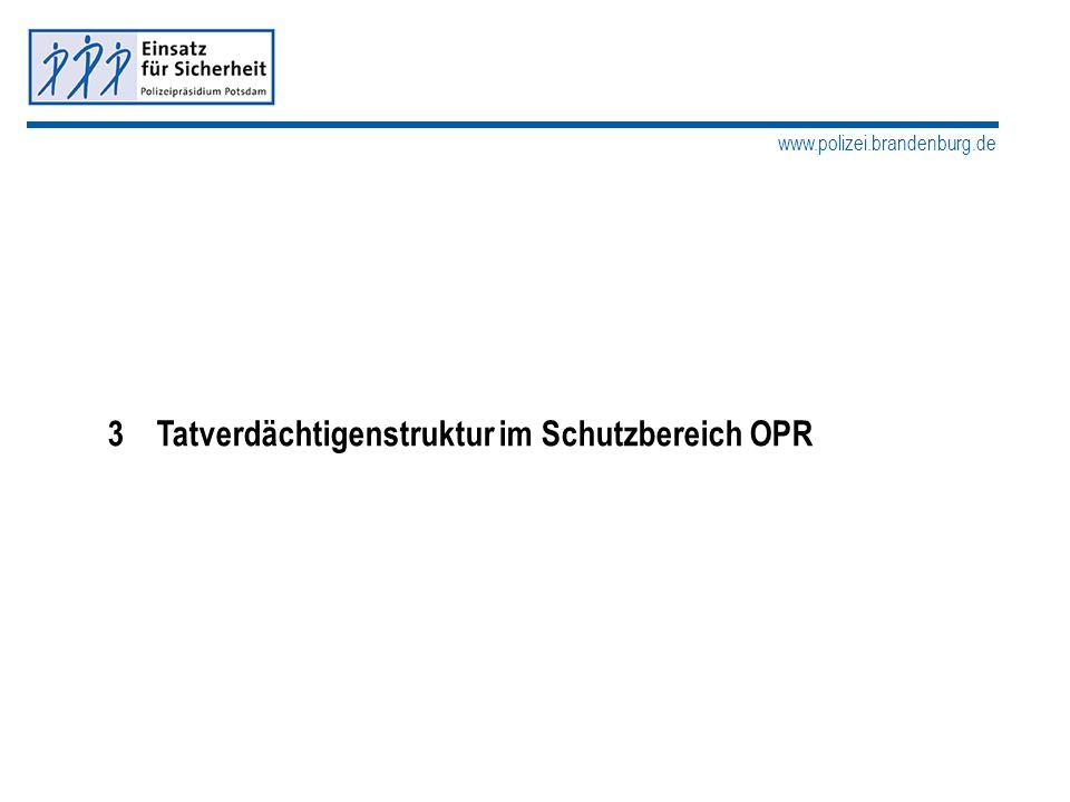 www.polizei.brandenburg.de 3 Tatverdächtigenstruktur im Schutzbereich OPR