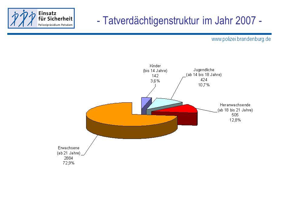 www.polizei.brandenburg.de - Tatverdächtigenstruktur im Jahr 2007 -