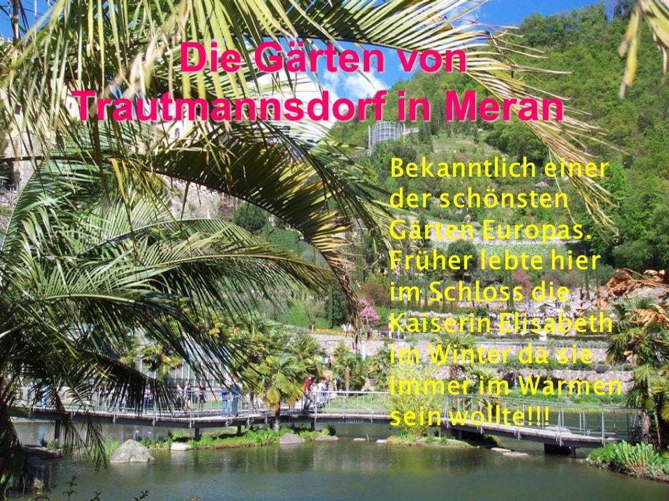 Die Gärten von Trautmannsdorf in Meran Bekanntlich einer der schönsten Gärten Europas.