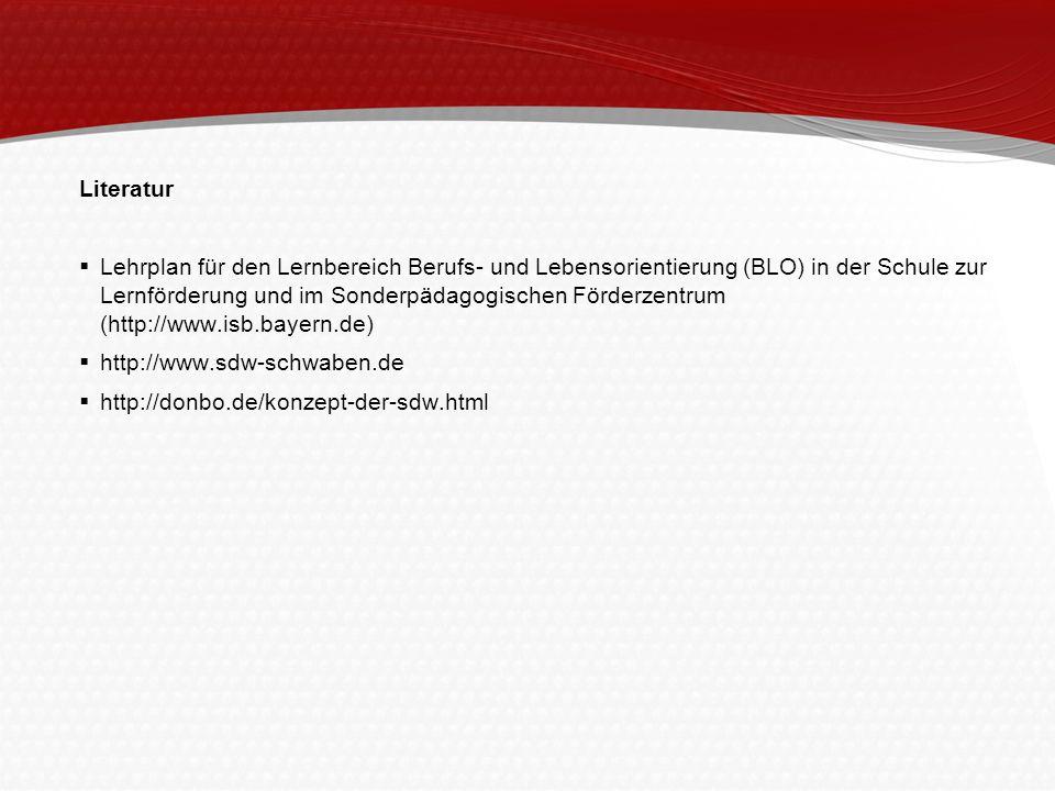 Literatur Lehrplan für den Lernbereich Berufs- und Lebensorientierung (BLO) in der Schule zur Lernförderung und im Sonderpädagogischen Förderzentrum (