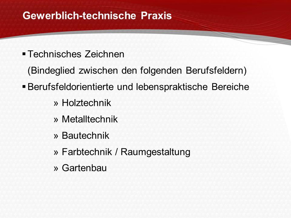 Gewerblich-technische Praxis Technisches Zeichnen (Bindeglied zwischen den folgenden Berufsfeldern) Berufsfeldorientierte und lebenspraktische Bereich