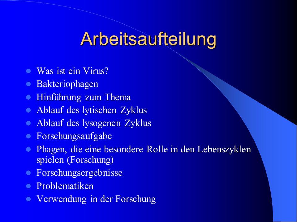 Arbeitsaufteilung Was ist ein Virus.