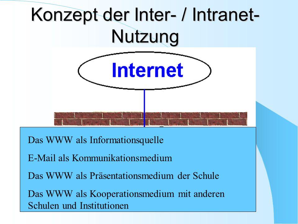 Das WWW als Informationsquelle E-Mail als Kommunikationsmedium Das WWW als Präsentationsmedium der Schule Das WWW als Kooperationsmedium mit anderen S