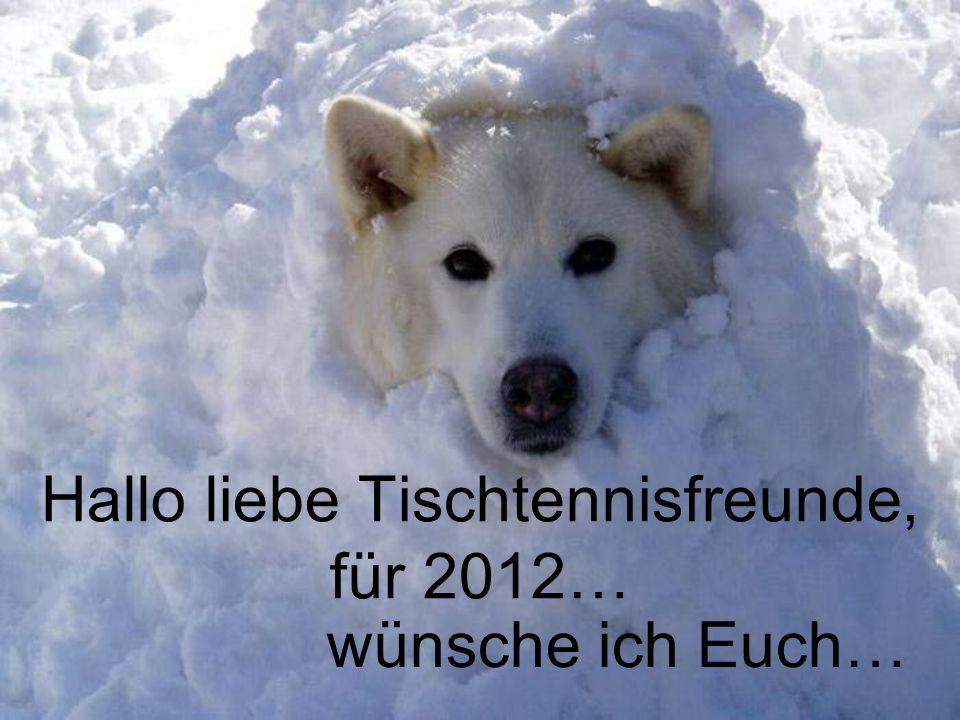 Hallo liebe Tischtennisfreunde, für 2012… wünsche ich Euch…