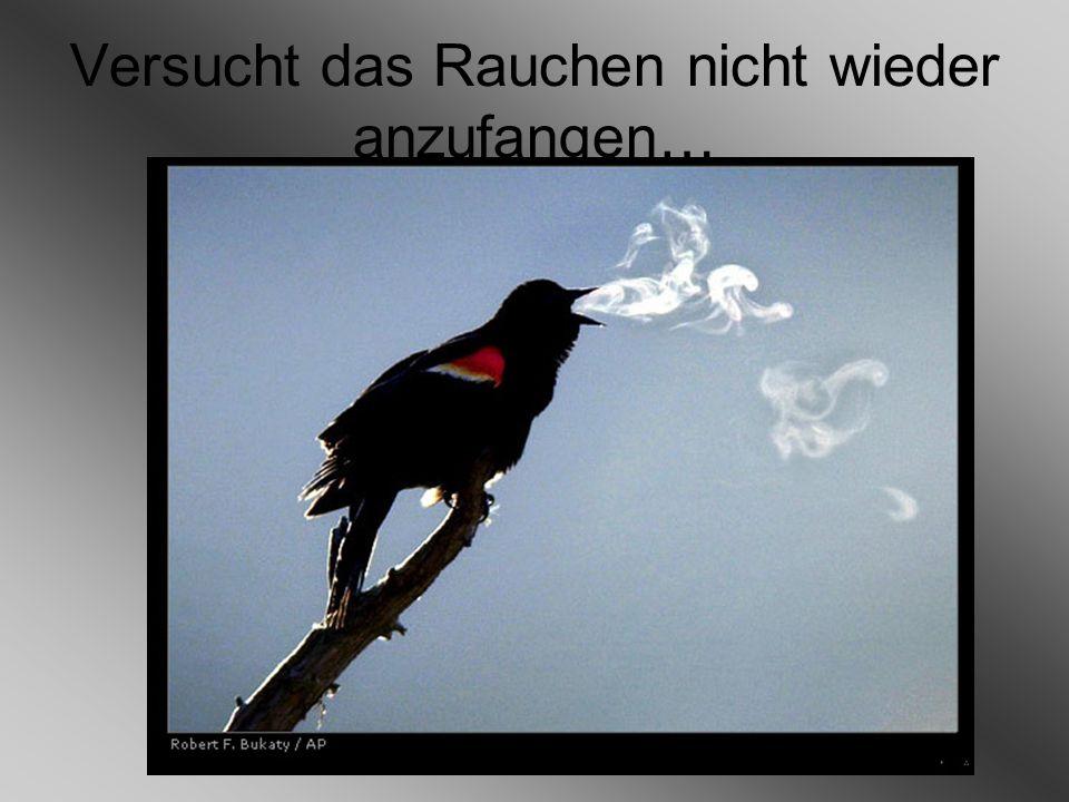 Versucht das Rauchen nicht wieder anzufangen…