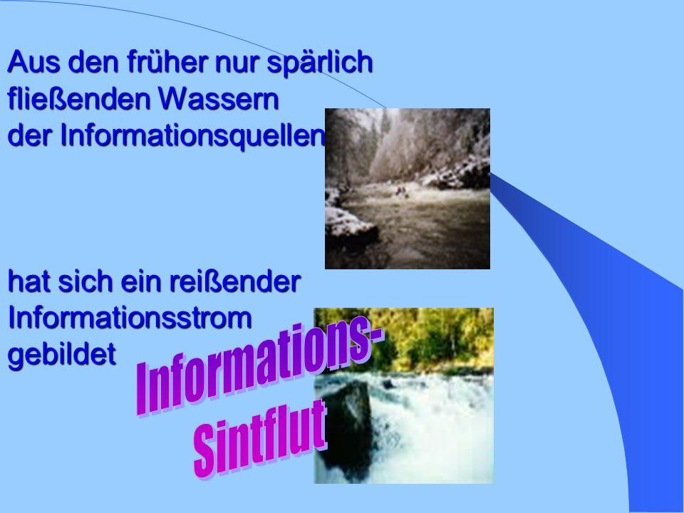 Aus den früher nur spärlich fließenden Wassern der Informationsquellen hat sich ein reißender Informationsstrom gebildet