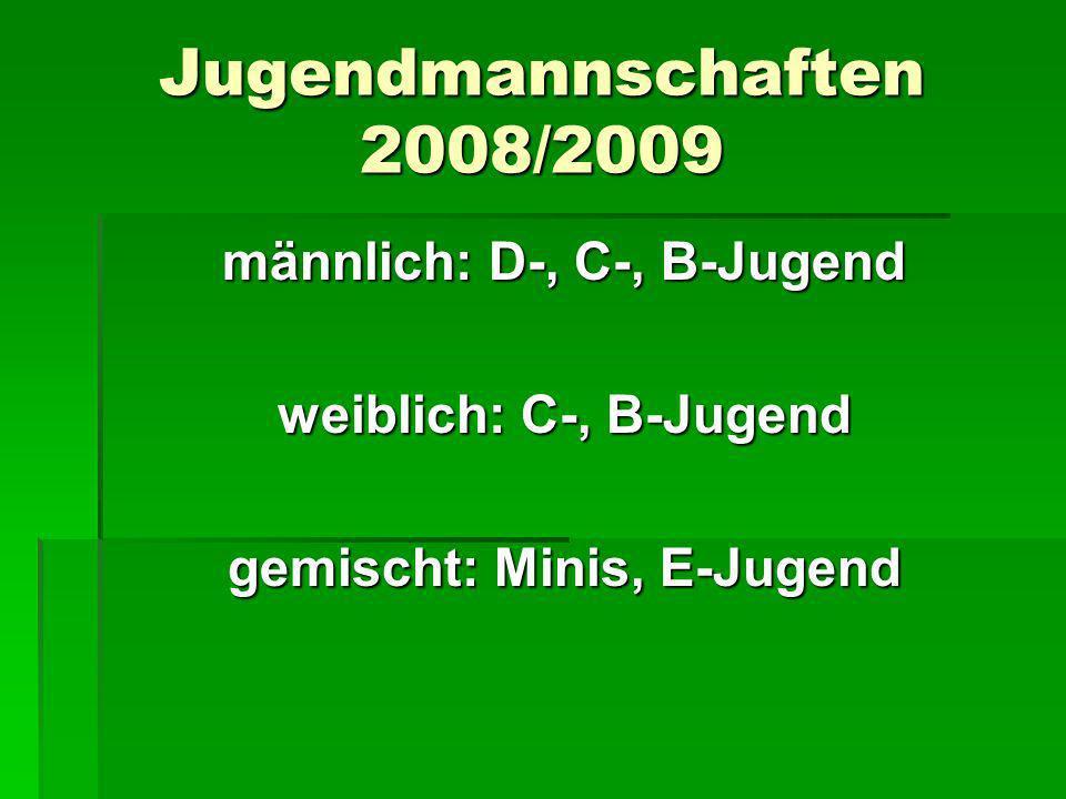 Jugendmannschaften 2008/2009 männlich: D-, C-, B-Jugend weiblich: C-, B-Jugend gemischt: Minis, E-Jugend
