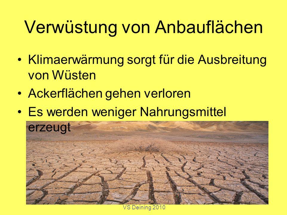 Norbert Schwarz, GSE 9, VS Deining 2010 Verwüstung von Anbauflächen Klimaerwärmung sorgt für die Ausbreitung von Wüsten Ackerflächen gehen verloren Es
