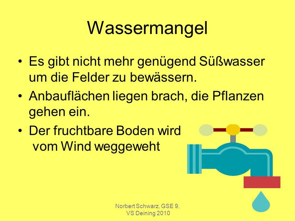 Norbert Schwarz, GSE 9, VS Deining 2010 Wassermangel Es gibt nicht mehr genügend Süßwasser um die Felder zu bewässern. Anbauflächen liegen brach, die