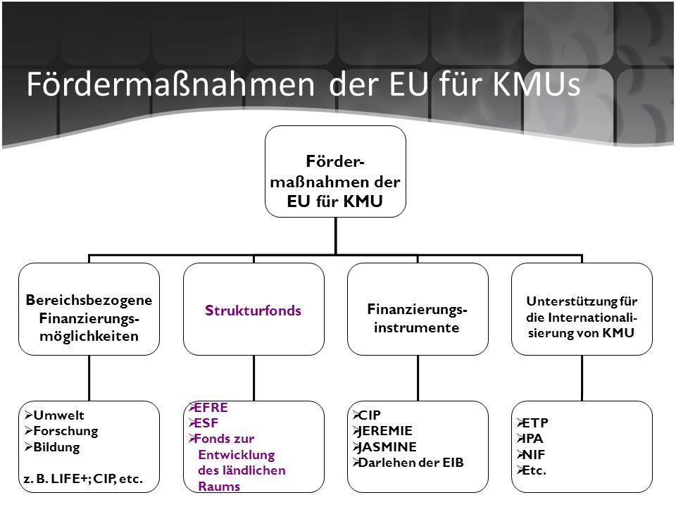 Fördermaßnahmen der EU für KMUs Förder- maßnahmen der EU für KMU Bereichsbezogene Finanzierungs- möglichkeiten Strukturfonds Finanzierungs- instrument