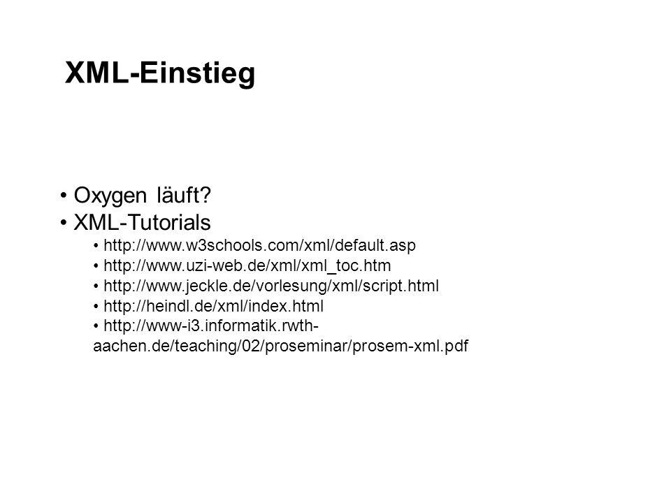 XML-Einstieg Oxygen läuft.